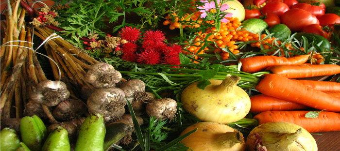 colorful vegetable display