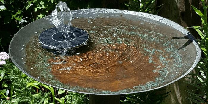 solar fountain in a birdbath