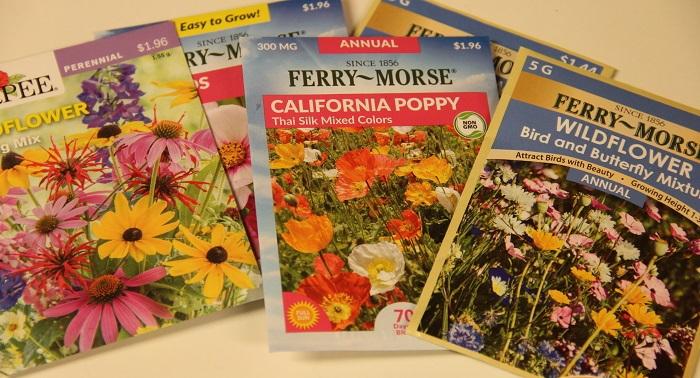 wildflower seed packages