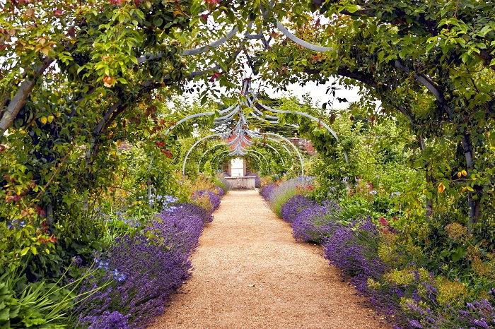 an accessible garden path