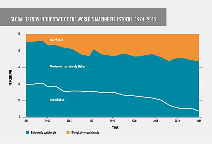 global trends of fish stocks