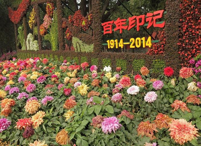 Chrysanthemum festival in Beijing
