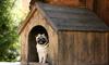 A dog house.
