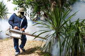 An exterminator spraying plants around a house.