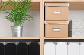 four cubic shelves with a plant on the top left shelf, boxes on the top right, and indistinguishable black and white items on the lower two shelves