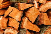 A close-up of a stack of firewood.