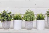 How to Seal a Concrete Planter