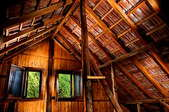 Looking out of open windows in the attic of an old wooden home.