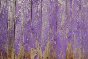 A fence of wood painted in purple.