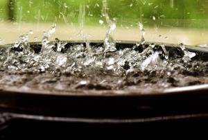 a bucket collecting rain