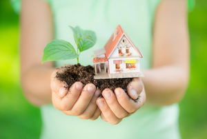 A child holding a pile of soil and a small house next to a leafy plant.