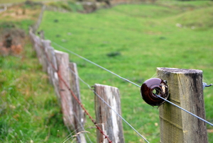 An electric fence with old barbed wire and wood posts.