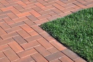 Grass Cornered by Bricks