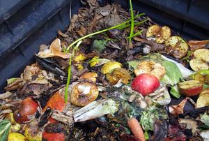 A composting bin.