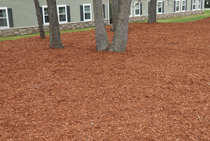 blanket of bark mulch spread out across a landscape