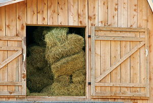 Hay Loft in Barn