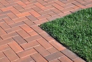 A brick sidewalk going through a yard.