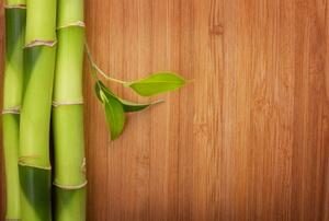 Bamboo flooring.