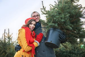 A couple hugging one another and holding a Christmas tree in a pot.