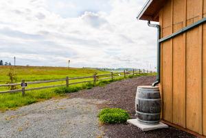 A rain barrel against a barn.