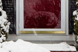 Storm Door in the snow