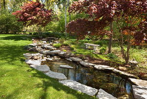 Lush Garden Back Yard With Stone Edged Pond
