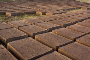 Bricks on the ground.