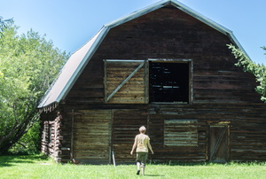 An old wood barn with a gambrel roof.