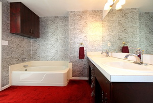 outdated, old, tacky bathroom with carpeting