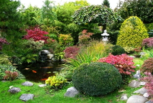 Lush Japanese garden with a koi-pond and stone path.