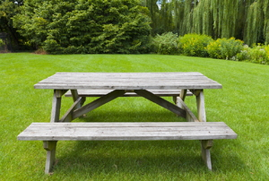 A picnic table in a grassy yard.