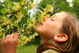 A young girl stops to smell the honeysuckle.