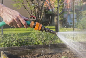 A garden hose with a spray.