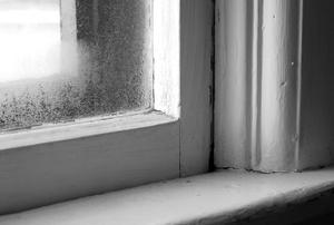 closeup of a window sill