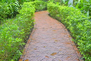 A brick walkway bordered with green plants.