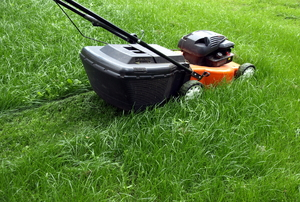 A red, self-propelled lawn mower with a bag attachment being used to trim the yard.