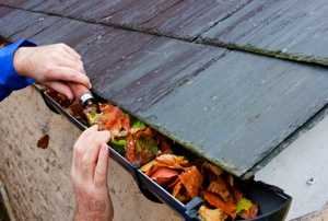 Clearing autumn leaves by hand from the gutter with a trowel.