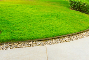 the curving edge of a well manicured lawn