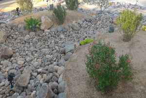 A dry creek bed as part of a xeriscaping landscape.