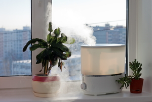 air purifier and plants in a room