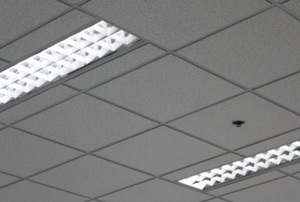 fluorescent lights in office building