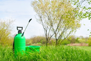 Handheld garden sprayer in the grass.
