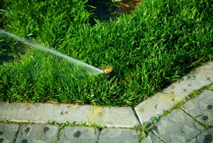 Low angle sprinkler in action.