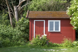 A small, red, wooden shed tucked away in a back yard.