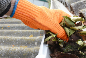 Gloved hand cleaning out a gutter
