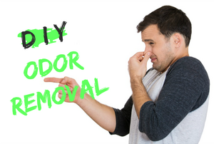 "A man holding his nose and pointing at the phrase, ""DIY Odor Removal."""