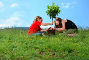 Two young girls planting a tree.