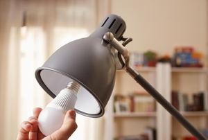 A lamp and a lightbulb.