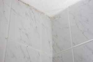 Mildew growing in and around the sealant above a shower enclosure.