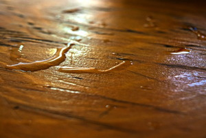 A wet hardwood floor.